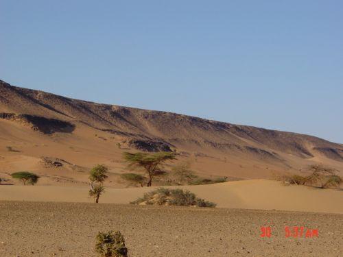 Mauritania_Adrar - 27