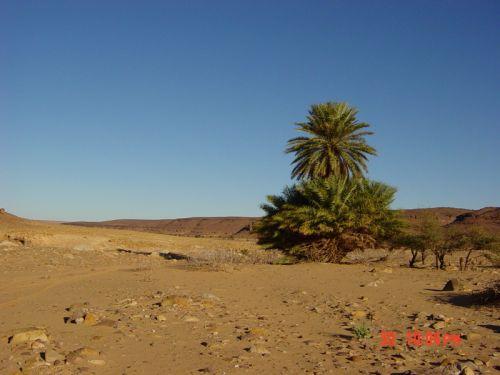 Mauritania_Adrar - 38
