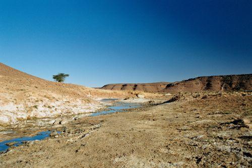 Mauritania_Adrar - 39
