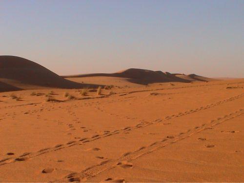 Mauritania_Tagant - 18