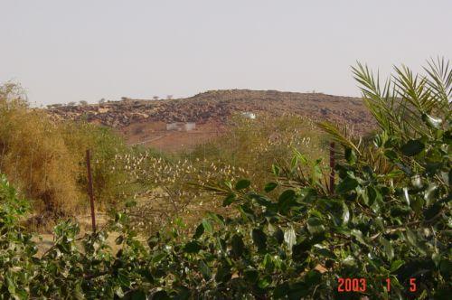 Mauritania_HodhElGharbi - 01