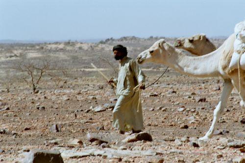 Mauritania_HodhElGharbi - 13