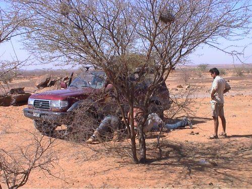 Mauritania_HodhElGharbi - 15