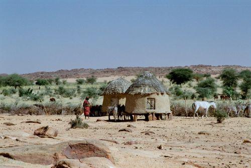 Mauritania_HodhElGharbi - 17