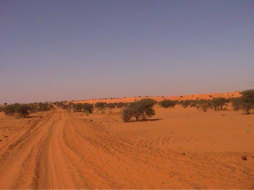 Mauritania_HodhElGharbi - 20