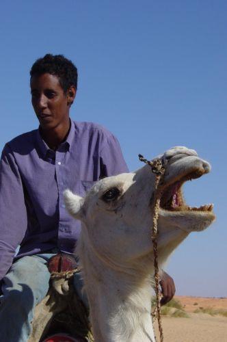 Mauritania_HodhElGharbi - 48