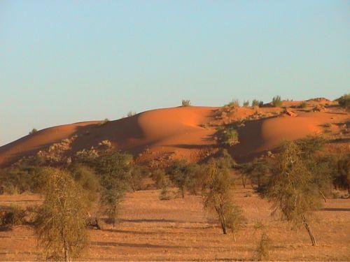 Mauritania_Tagant 2 - 08