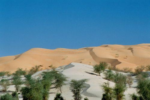 Mauritania_Tagant 2 - 11