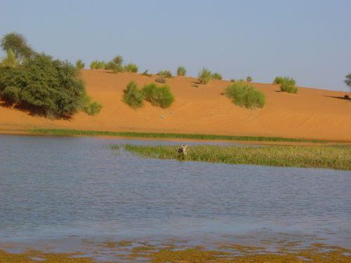 Mauritania_Tagant 2 - 14