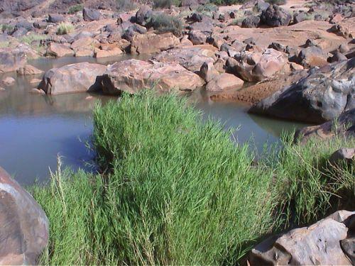 Mauritania_Tagant 2 - 26