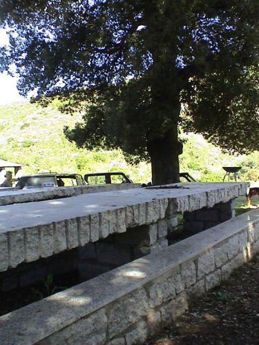 Sardegna2003 - 17