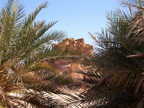 Tunisi-Agadez3 - 05