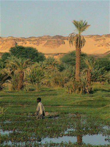 Tunisi-Agadez4 - 17