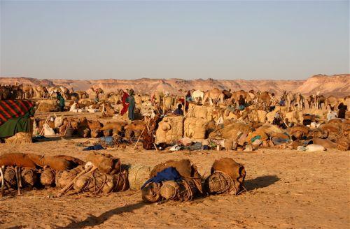 Tunisi-Agadez4 - 26