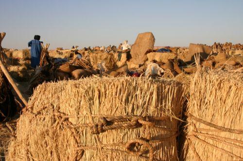 Tunisi-Agadez4 - 30