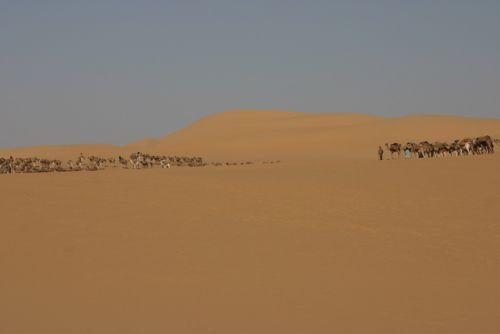 Tunisi-Agadez5 - 17