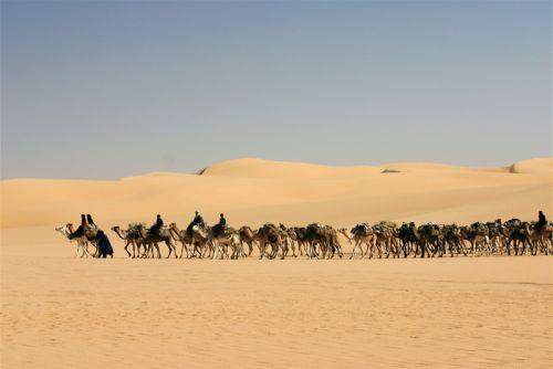 Tunisi-Agadez5 - 18