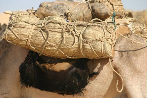 Tunisi-Agadez5 - 22