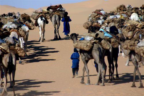 Tunisi-Agadez5 - 24