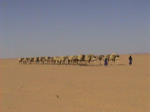 Tunisi-Agadez6 - 25